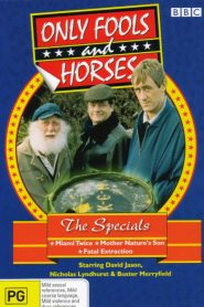 Only Fools and Horses: Specials